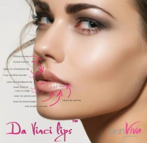 da vinci lips diagram